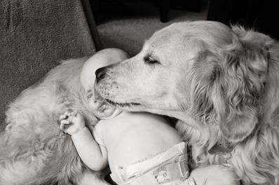 Barkley & Eli